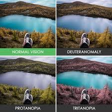 Tritanopia 💡💻 Iris Software For Eye Protection Health