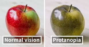 Vision_Daltonization_Protanopia