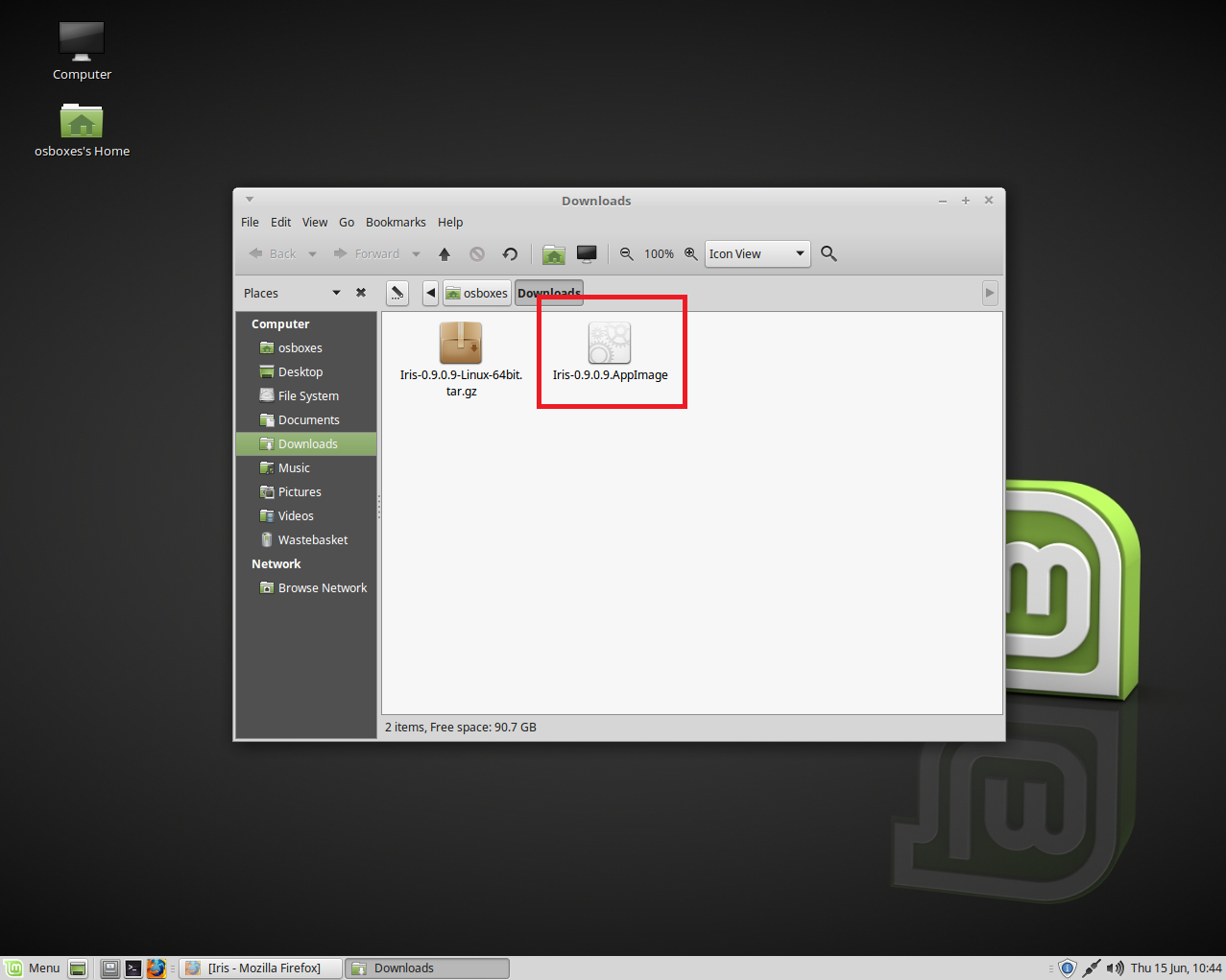 How to Install Iris on Linux Mint - 💡💻 Iris - Software for Eye