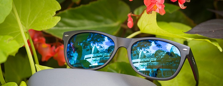 Color Blindness Glasses | IrisTech