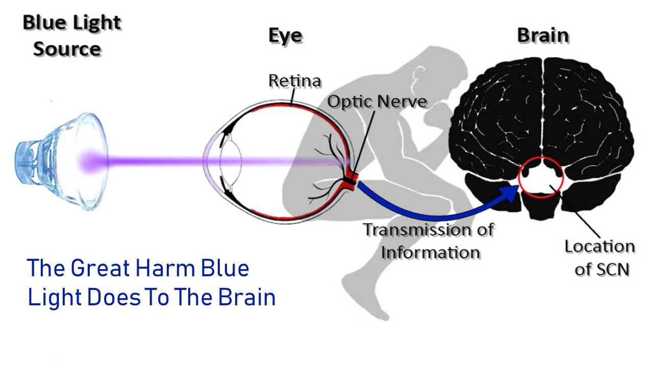 blue light uv light retina damage brain problems eye protection blue light filter eye health